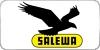 casques Salewa 2017