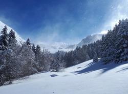 supêrbe snow